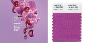 """pantone radiant orchid"" by homestilo   Creative Commons Attribution License"